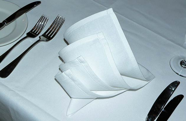 Folding Table Napkins : Six Easy Napkin Folds For Your Dinner Table  Fabulous Raffia Ribbon